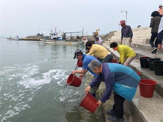 보성군, 수산 종자 방류사업 어민 소득증대 기대