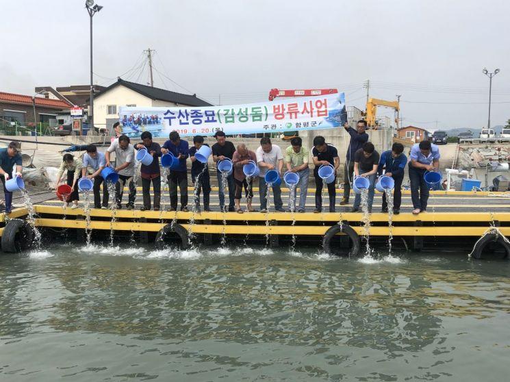 함평군, 수산자원 조성·어업인 소득증대 '박차'