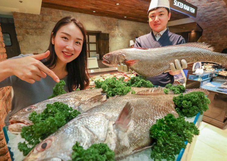 30일 오전 현대백화점 압구정본점 식품관에서 직원들이 '대물 민어'를 들어 미리 선보이고 있다.