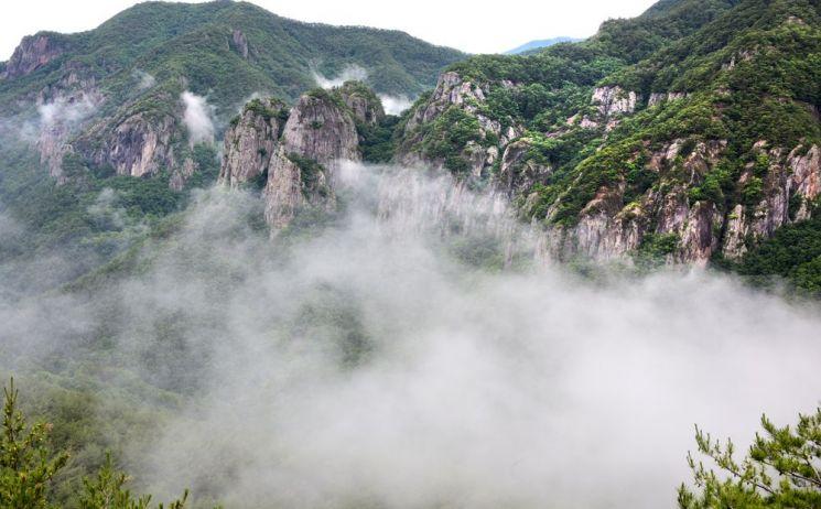 웅장한 주왕산은 기묘한 자태로 솟아 오른 암봉 사잇길을 걷고 우렁찬 폭포수를 보면 자연의 기운이 충만해진다. 주봉길 전망대에서 바라본 주왕산의 기암괴석사이로 운무가 넘나들고 있다.