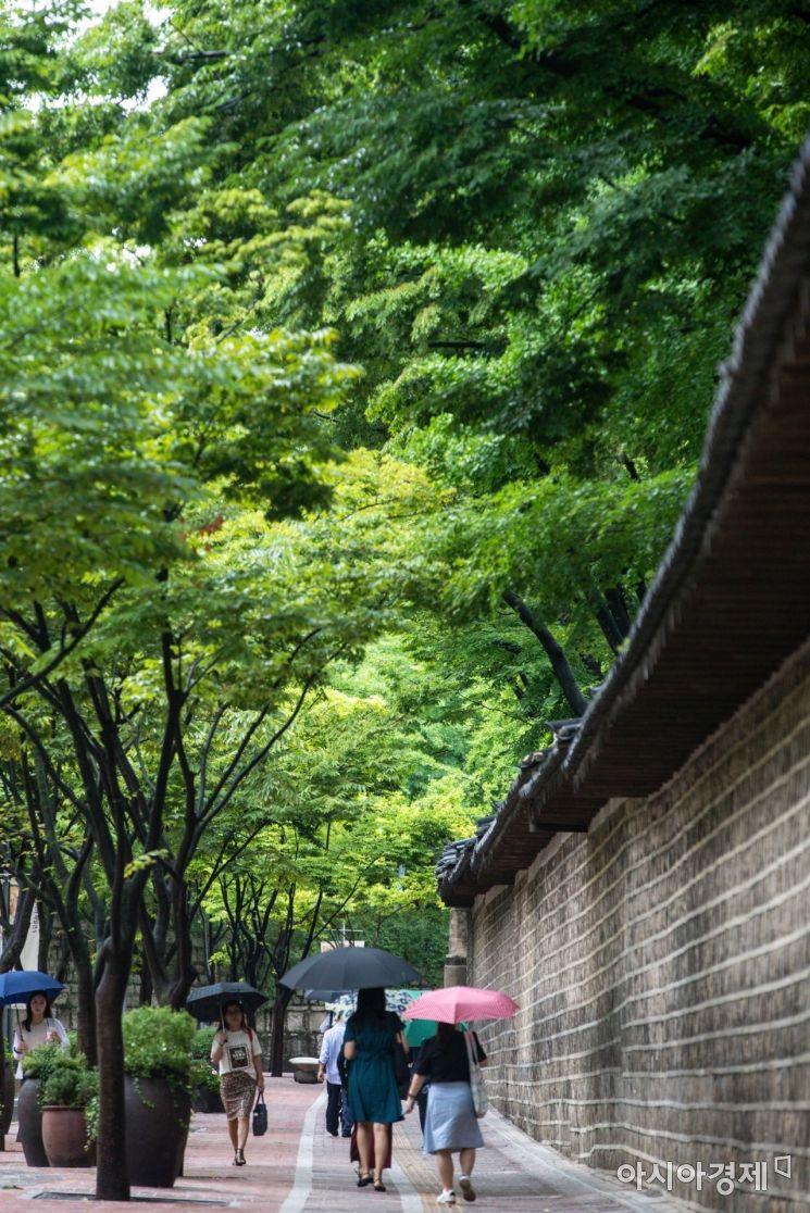 [포토]여름길
