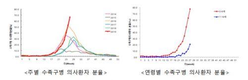 """수족구병 환자 최고 수준…""""진단·의심 땐 어린이집 보내지 말아야"""""""