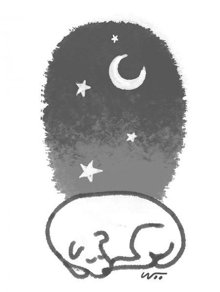 [오후 한 詩]개의 밤이 깊어지고/강성은