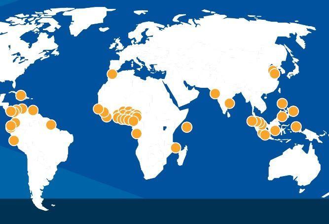 세계 주요 해적 출몰 지역(노란색 원 표시). 동남아시아 일대와 동아프리카, 서아프리카 해안 일대가 3대 해적 출몰지로 유명하다. 이 지역들은 1990년대 이후 경제악화와 정정불안에 따라 생계형 해적들이 급격히 늘어나면서 해적문제가 심각해졌다.(자료= 국제해사국(IMB)의 해적발생신고센터(Piracy Reporting Centre) 홈페이지/ www.icc-ccs.org)