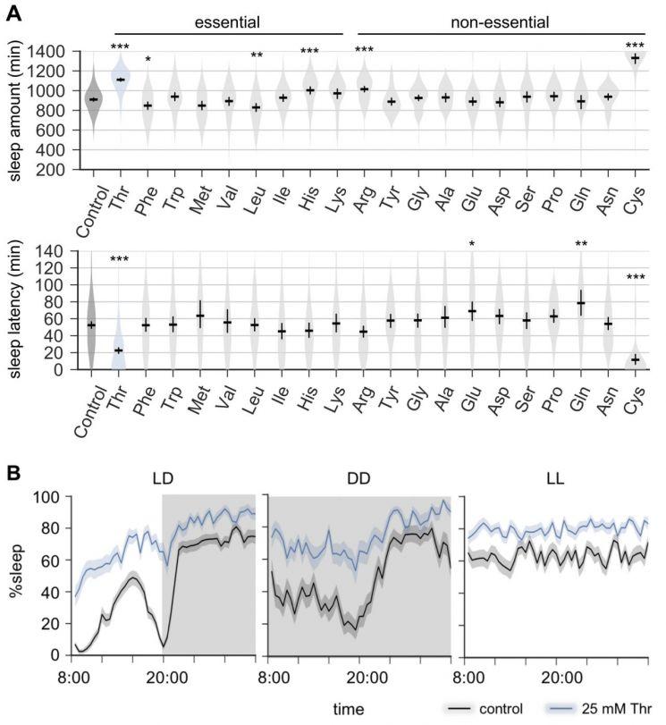 필수 아미노산 트레오닌 섭취에 따른 수면촉진 효과