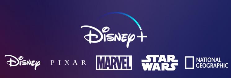 '디즈니+' 홈페이지 미리보기/사진='디즈니+' 홈페이지 캡처