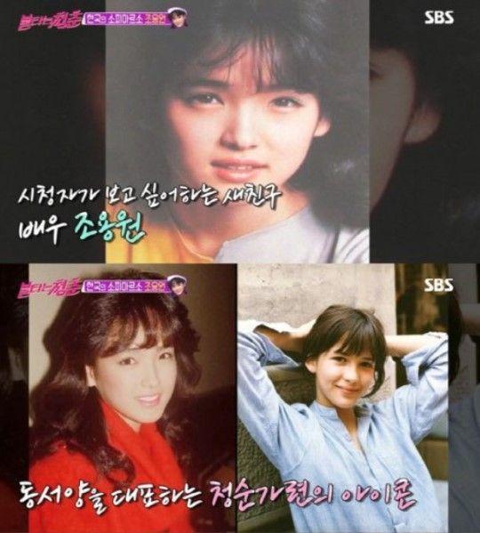 6일 방송된 SBS '불타는 청춘'에서는 시청자들이 꼽은 '보고싶은 새 친구' 조용원을 찾아 떠나는 멤버들의 모습이 그려졌다/사진=SBS '불타는 청춘' 화면 캡처