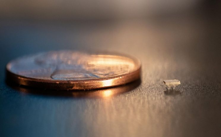 쌀알 크기의 초소형 로봇을 움직이는 동력은 무엇일까요? 사진 오른쪽 1페니 동전의 크기와 비교되는 초미니 로봇의 모습.  [사진=美 조지아공대]