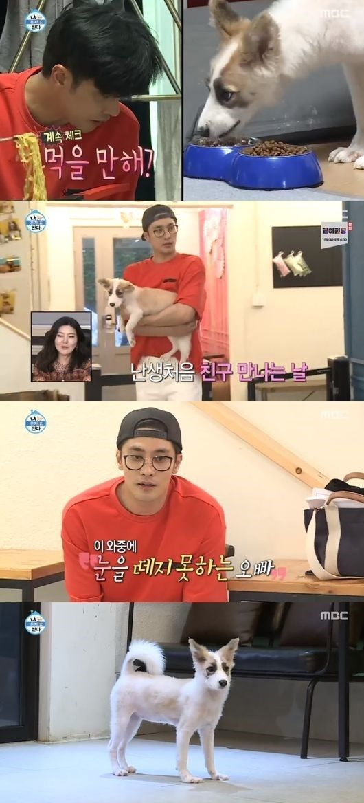 '나 혼자 산다' 성훈, 안락사 위기 유기견 입양