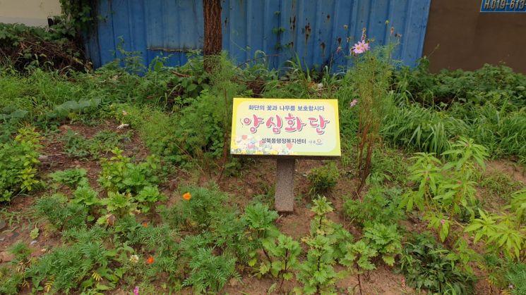 나주시 성북동 '양심화단' 조성