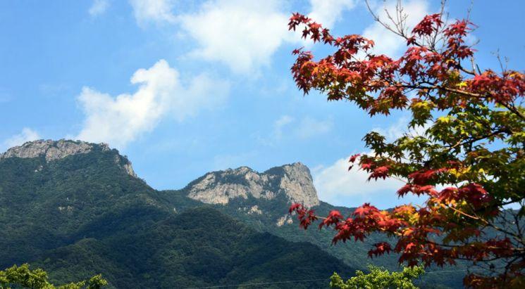 단풍이 물들기 시작한 월악산국립공원. 송계야영장에서 바라본 영봉
