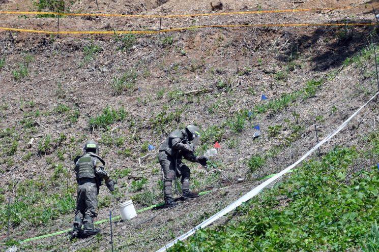 지난 5월28일 강원도 철원군 화살머리고지 일대에서 남북공동유해발굴 TF 장병들이 지뢰를 제거하고 있다. (사진=공동취재단)