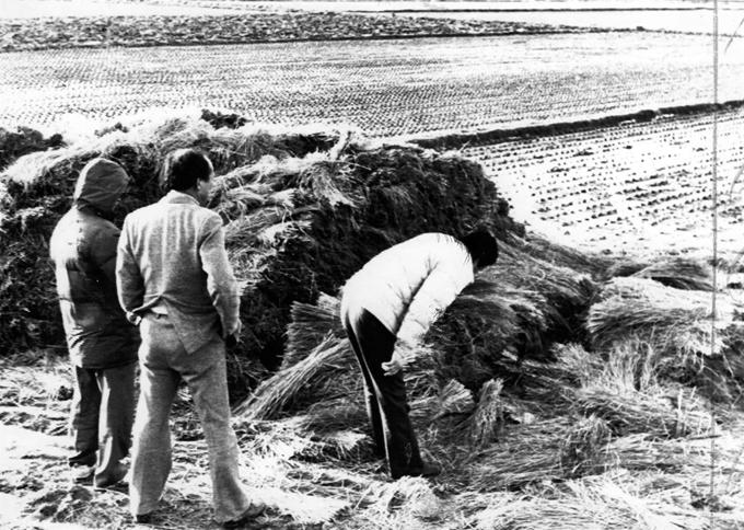 1987년 1월 경찰이 연쇄살인 사건 현장인 화성 황계리 현장을 살펴보고 있다. 연합뉴스