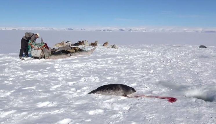 韓 연구진, 남극 지표 온도 동·서 양극화 원인 찾았다