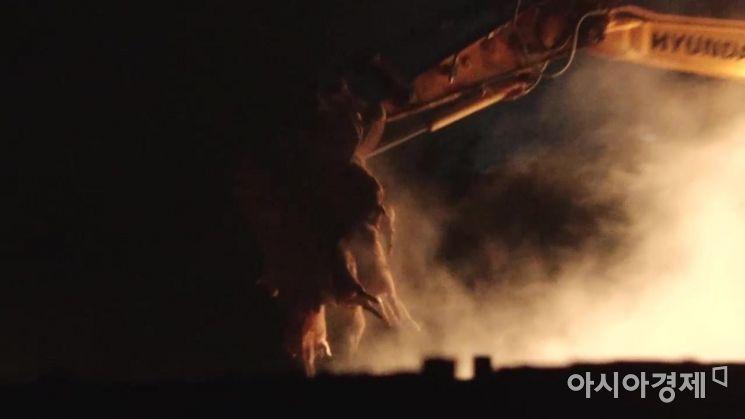 지난달 29일 첫 발병 이후 아홉 번째 확진 농가가 나온 인천 강화군의 한 양돈농가에서 돼지들을 살처분하는 모습. 앞서 인천시와 강화군은 강화군 내 전체 돼지 4만3000마리의 살처분을 결정하고 3일까지 작업을 마칠 계획이라고 밝혔다. 사진 = 동물권단체 케어