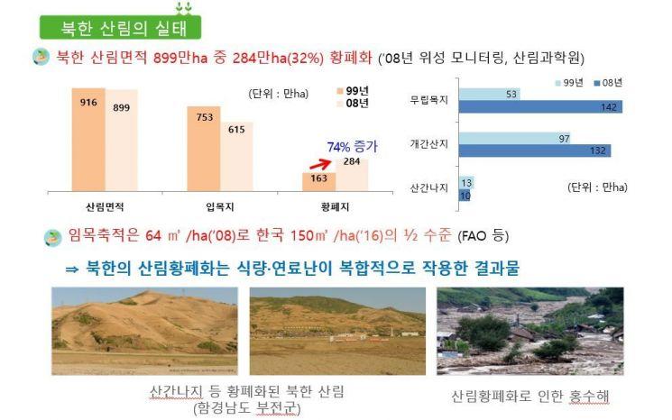 지난해 4월 27일 판문점 선언 이후 실시된 '북한 산림의 실태조사결과' 도식화 자료. 산림청 제공