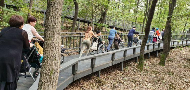 노원구, 장애인도 산책 가능한 '무장애 숲길' 확대