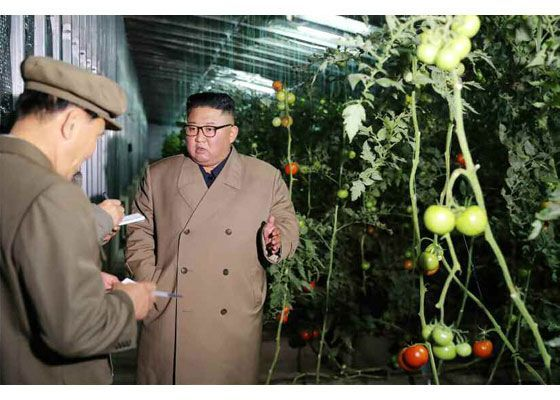 김정은 북한 국무위원장이 경성 중평남새온실농장을 방문했다고 조선중앙통신이 18일 보도했다.