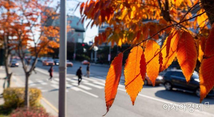 절기상 '입동'인 8일 서울 강남구 봉은사로에서 시민들이 두꺼운 외투를 입고 발걸음을 재촉하고 있다./사진=아시아경제DB