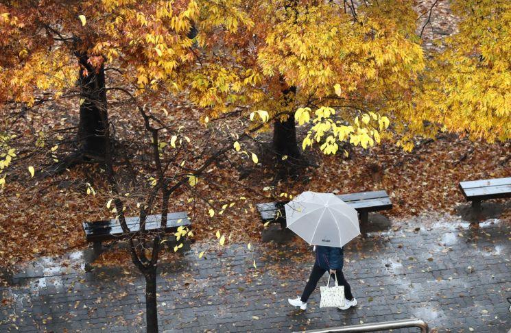17일 오후 대전시 서구 갈마동 거리를 우산을 쓴 시민이 지나가고 있다.  / 사진=연합뉴스