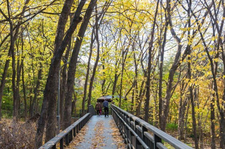 계남공원 무장애숲길