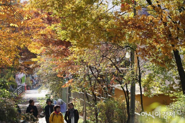 [포토]가을 속에서