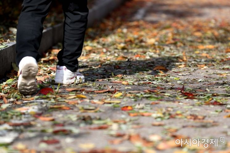 [포토]낙엽 밟는 소리