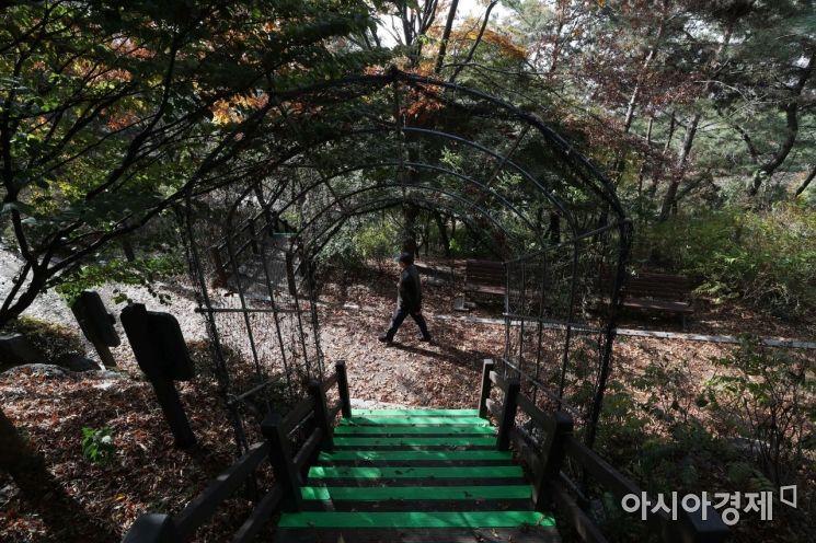 [포토]낙엽 밟으며 느끼는 늦가을 정취
