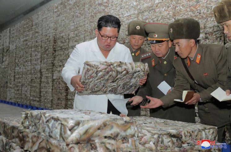 북한 김정은 국무위원장이 조선인민군 8월25일수산사업소와 새로 건설한 통천물고기가공사업소를 현지지도했다고 조선중앙통신이 19일 보도했다.