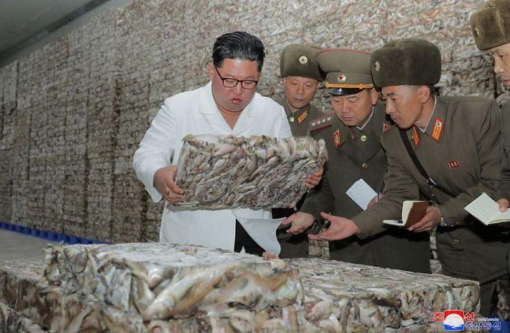 """조선중앙통신은 19일 김정은 국무위원장이 """"조선인민군 8월25일수산사업소와 새로 건설한 통천물고기가공사업소를 현지지도하시었다""""고 보도했다. 김 위원장이 간부들과 수산사업소를 둘러보고 있다."""