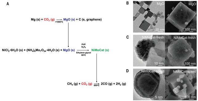 단결정의 마그네슘 산화물 및 촉매 합성 방법. (B)단결정 마그네슘 산화물의 전자현미경 이미지. (C)합성된 촉매의 전자현미경 이미지. (D)메탄의 건식 개질 반응 후 촉매의 전자현미경 이미지. 니켈-몰리브데늄 나노입자가 단결정의 마그네슘 산화물 꼭짓점 부분에 있다.
