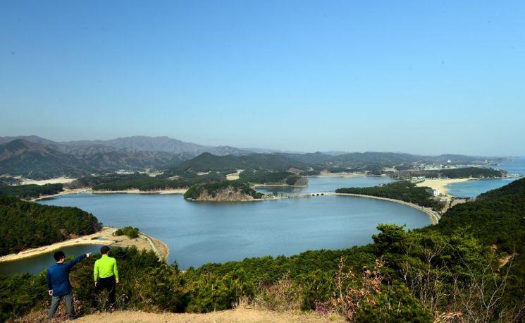 응봉 전망대에서 바라본 화진포와 화진포해변