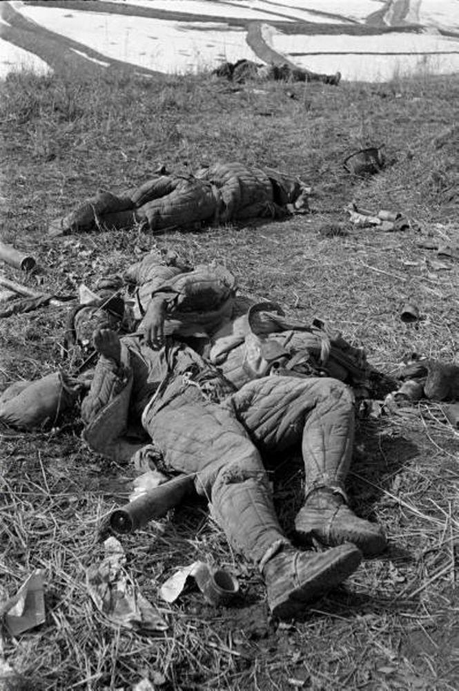 중공군의 철수 후 남겨진 시신들. 미 23연대는 용기와 신념으로 지평리 전투에서 승리하며 야심만만했던 중공군의 4차 공세를 좌절시켰다.