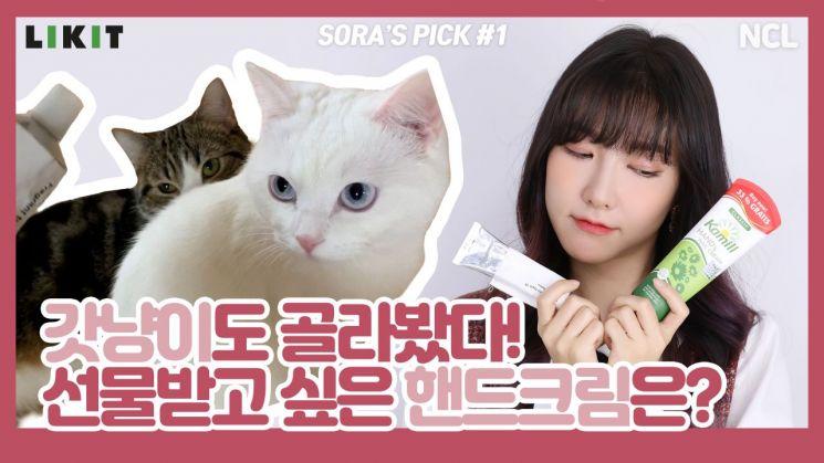 사랑스러운 에디터 소라와 애옹이★