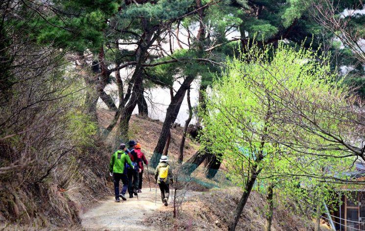 괴곡성벽길을 걷는 사람들