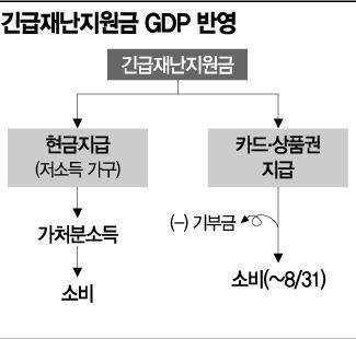 """""""재난지원금, GDP 효과 미미…미래소비 앞당길 뿐"""""""