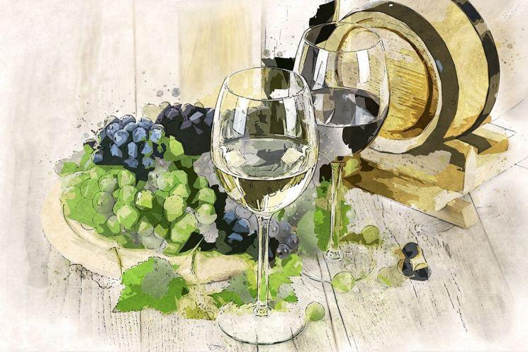 [드링킷] 떠오르는 비건 프렌들리 와인