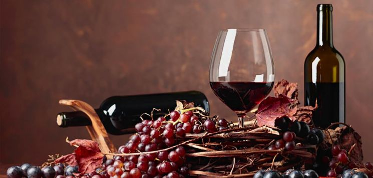 [드링킷] 아파시멘토 기법의 와인