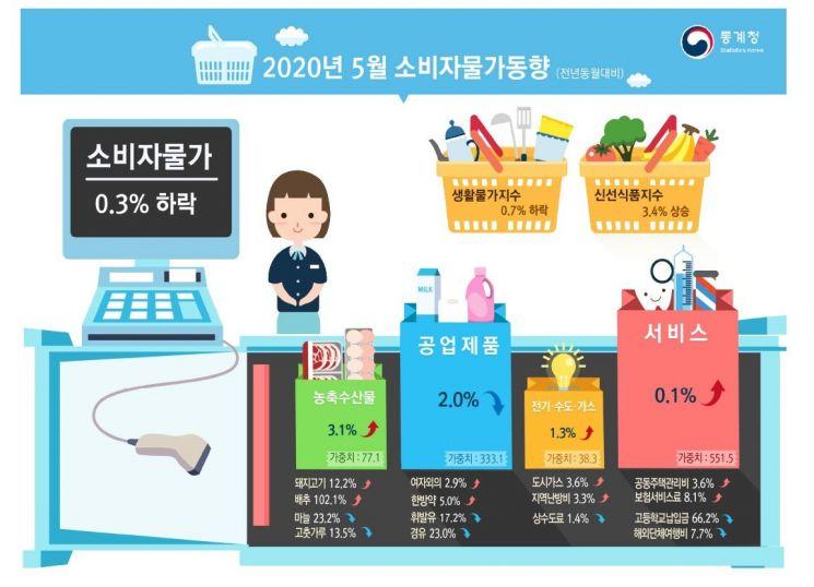 5월 소비자물가 0.3%↓…8개월 만에 다시 마이너스(종합)