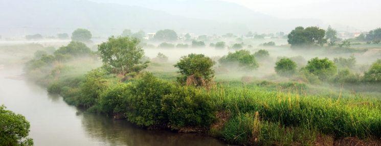 물안개 피어난 병천천의 아침풍경