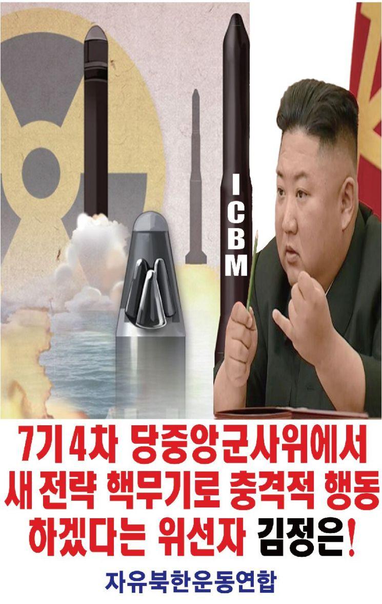자유북한운동연합이 5월 31일 북한으로 날려보낸 대북전단 <사진 제공=자유북한운동연합>