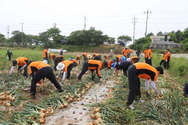함평소방서 '코로나19' 피해농가 봉사활동 전개