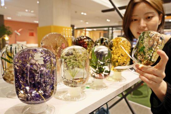 [포토]갤러리아百, 여름 숲 담은 '플랜테리어' 소품 판매