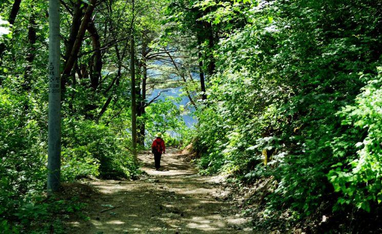 화천 파로호 깊숙한 곳에 자리한 비수구미 마을은 자연그대로를 간직한 오지다. 비수구미로 드는 6km 생태길은 코로나19에 지친 모두에게 휴식이자 치유길이다.