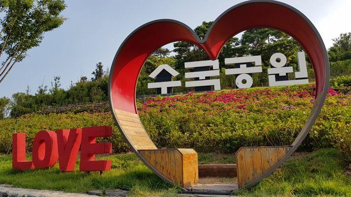 신안군은 오는 18일부터 27일까지 열흘간 도초면 지남리에 있는 수국공원에서 '섬 수국 랜선 축제'를 개최한다. (사진=신안군 제공)