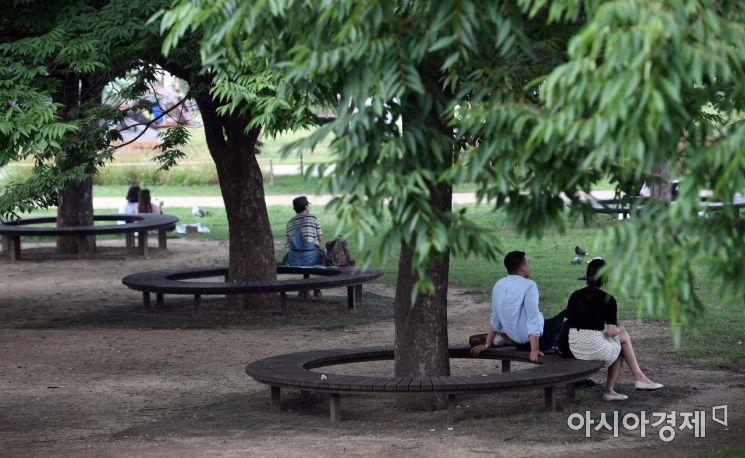 [포토] 시원한 나무그늘