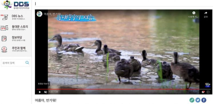 성북천·정릉천·청계천·중랑천 여름나기 풍경 영상