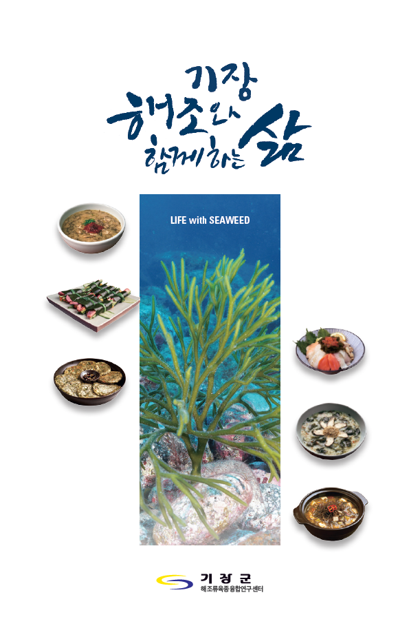 미역, 다시마 … 부산 기장바다 '해조'와 함께 살려면?