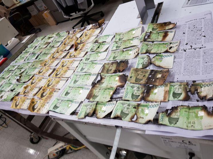 전자레인지에 넣어 훼손된 지폐