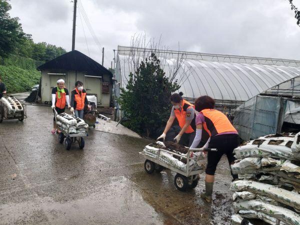 광주 광산소방서 의용소방대원들이 침수피해를 입은 광산구 유림마을 비닐하우스의 모종판을 이동하고 있다. 사진=광주 광산소방서 제공